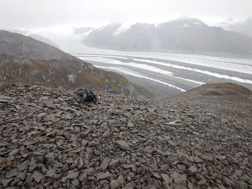 jpg David Whistler found an ichthyosaur jaw in 1963 on this the summit ridge.The ice axe and backpack show the area where many more bones of the specimen were rediscovered in August 2017.