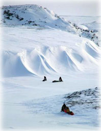 Snow researcher finds his Arctic