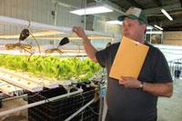 Microgreen farmer has a vision for the Alaska diet