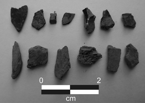 jpg Discovery Of Alaska Spear Points Raises New Questions About Human Arrival In North America