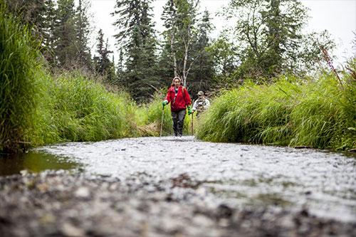 jpg Hansen Creek in southwest Alaska