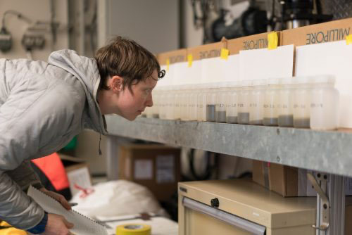 jpg Steffi O'Daly looks at seawater samples from the Bering Strait aboard the UAF research ship Sikuliaq.