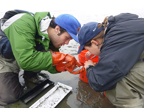 jpg Doug Duncan and Emily Whitney work at one of the sampling sites.