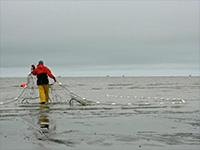 Report identifies ways to rejuvenate Alaska's commercial fishing fleet