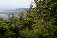 In the Face of Political Uncertainty, Tongass Transition Collaborative Stress Importance of Local Partnerships