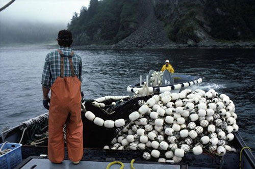 jpg Summit aims to train fishing's next generation