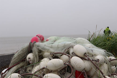 jpg A gill-net stashed on the beach of Bristol Bay.