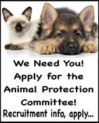 KGB Animal Protection Ad Hoc Committee Recruitment