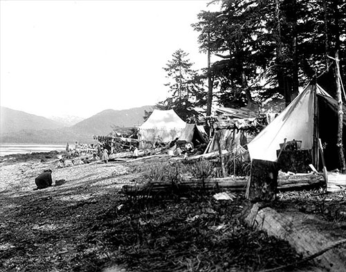 jpg Camp ofKing Salmontrollers at Vallenar Point, 1902