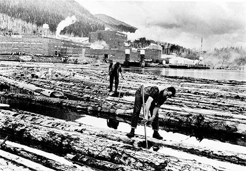 jpg Pond men on floating logs, Ketchikan Pulp Mill.