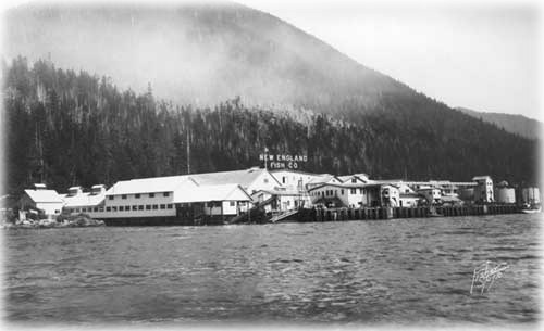 Catching a Can in Ketchikan;  A History of the 'Canned Salmon Capital of the World'  A feature story by DAVE KIFFER