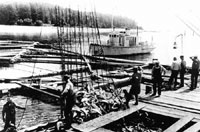 Ketchikan Supported Alaska Statehood, Eventually