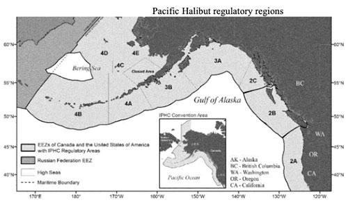 jpg Pacific Halibut regulator regions