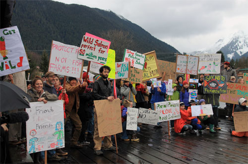 "jpg A  ""Say no to GMO salmon"" rally at Sitka last week attracted nearly 150 people."