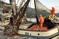 Economic Value of Alaska's Seafood Industry
