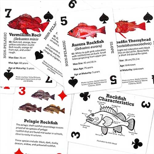 Sitnews Go Fish By Laine Welch