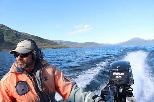 jpg Daniel Schindler of the University of Washington's Alaska Salmon Program in the Bristol Bay watershed, which the program has studied since 1946