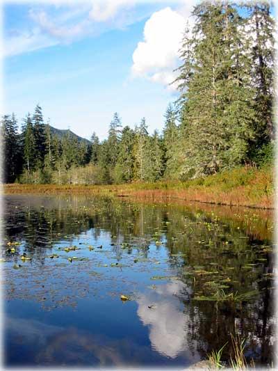 Sitnews stories in the news ketchikan alaska front for Lake bryan fishing